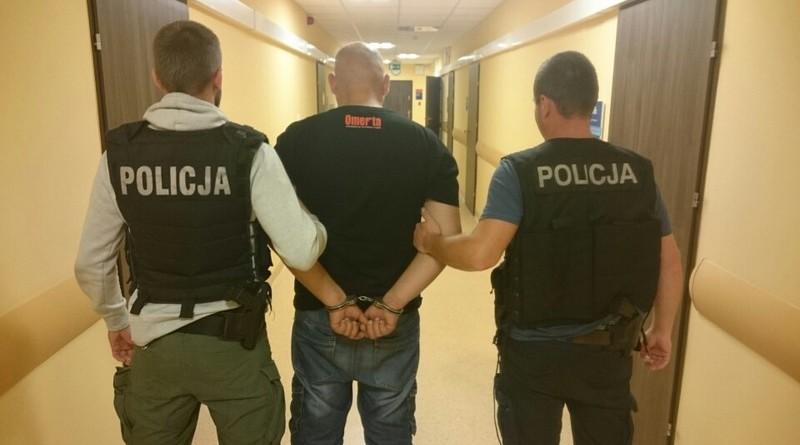 11 policja zatrzymanie