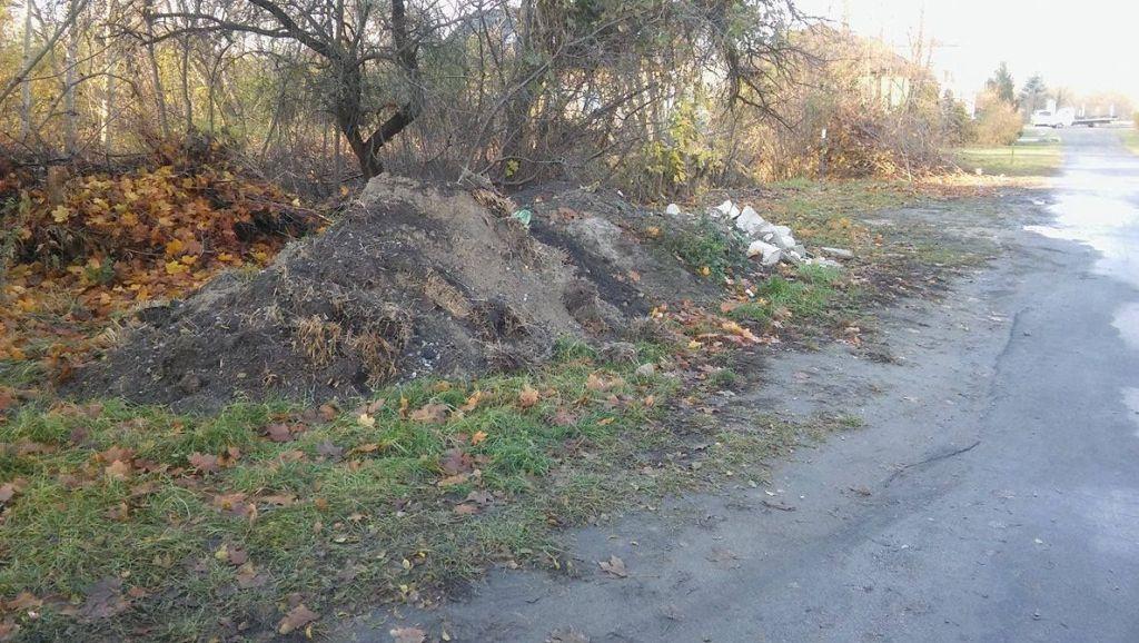 podrzucone-odpady-przy-ul-kotlarskiej,pic1,1002,100782,155444,show2