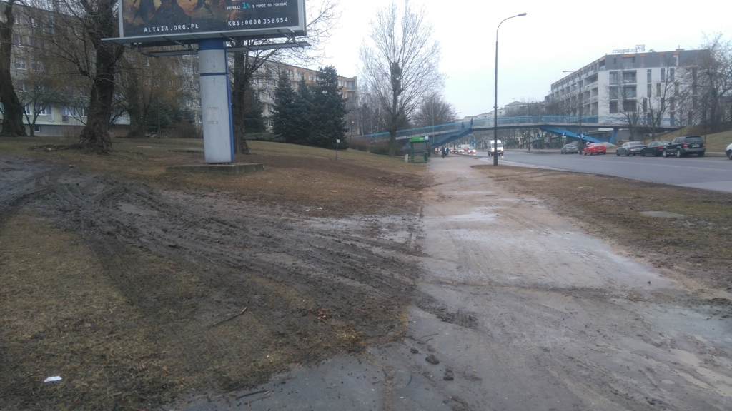 ul-slowianska-zniszczony-trawnik-w-trakcie-wymiany-plakatu,pic1,1002,102947,160591,show2