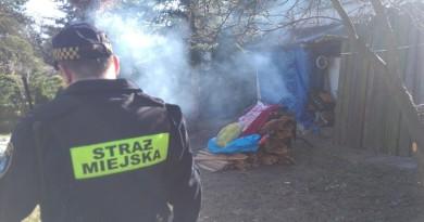 eko-patrol-interwencja-na-terenie-ogrodow-dzialkowych,pic1,1002,104234,163448,with-ratio,16_9