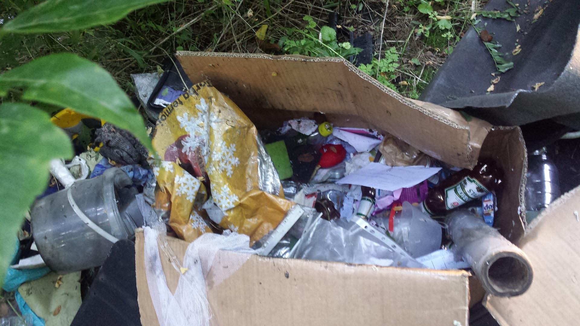 odpady-porzucone-na-drodze-dojazdowej-do-fortu-va-przy-ul-lechickiej,pic1,1002,109030,175126,show2