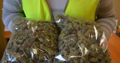 narkotyki policja leszno